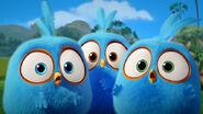 Angry-birds-blues-rovio