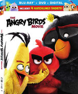 Angry Birds Movie BD Slipcover