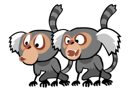 File:Marmosets.png