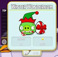 Abs 15 winter wonderham