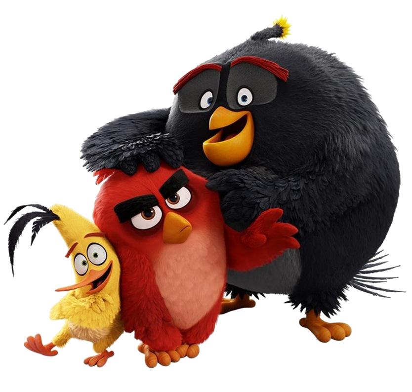 Image angry birds wiki fandom - Angry birds trio ...