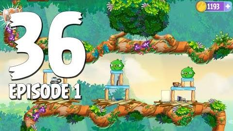 Angry Birds Stella Level 36 Walkthrough Branch Out Episode 1