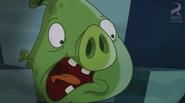 Angry Birds Toons HD 44 Hambo (17)