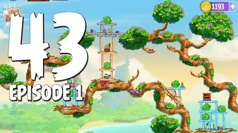 Angry Birds Stella Level 43 Walkthrough Branch Out Episode 1