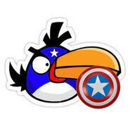 CaptBoomerang copy