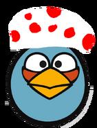 Toad Bird