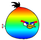 Rainbow Bird New
