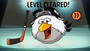 LevelClearedNHL