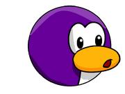 Purple pengin