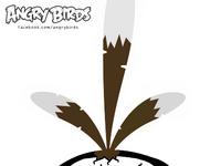 Brownbird3
