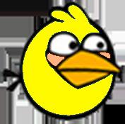 Baby Yellow Bird New