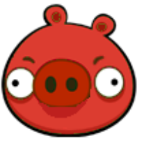 Red Pig New
