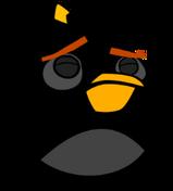 Sad kashy