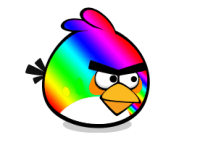 RAINBOW BIRD!