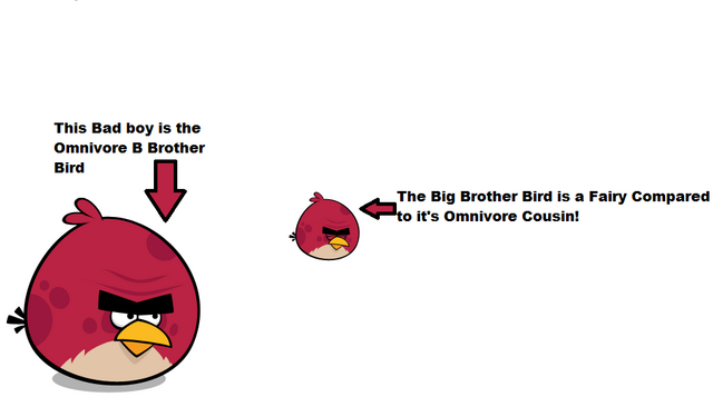 File:Omnivore B Brother Bird.png