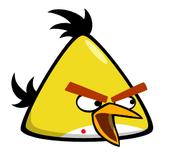 Assasin Yellow Bird