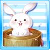 Cutesy Rabbit Mochi