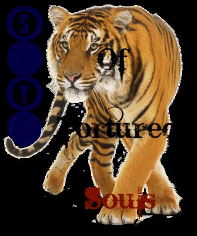 Tiger PNG23223 (1)SKYEBOOOBOOOBEAR