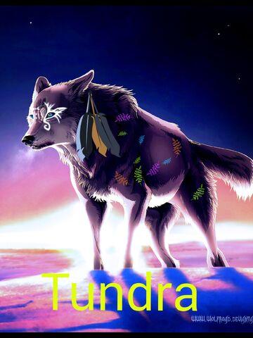 File:Image we tundra XD .jpeg