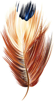 Feather-Vector-5
