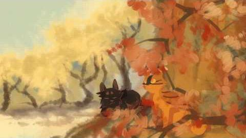 MOTH'S WINGS Warrior cats AMV