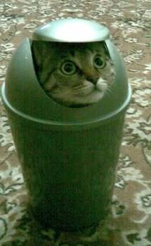 File:Trash2.png