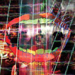 CentipedeHz AlbumCover