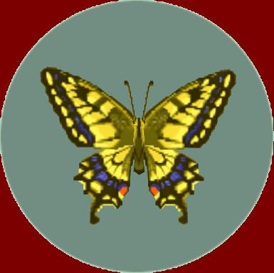 File:Tiger Butterfly (City Folk).png