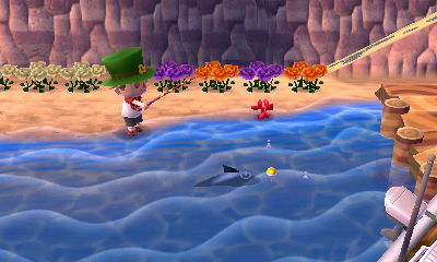 File:Fish (fin).jpg