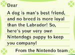 LabradorLetter