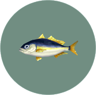 File:Horse Mackerel (City Folk).png