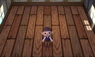 New Leaf Player House (Stage 3)