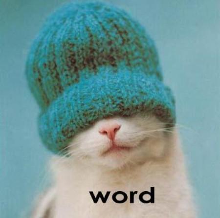File:Gangsta cat.jpg