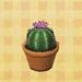 Round-cactus