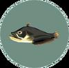 Catfish (City Folk)