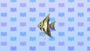 File:Angelfish.png