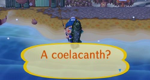 File:Coelacanth4.jpg