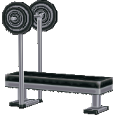 File:Weightbenchcf.png