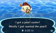 HNI 0097 pearl oyster