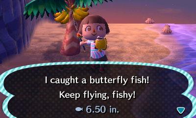 File:ButterflyFish2.JPG