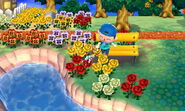 ACNL-Benchwatering