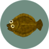 Olive Flounder (City Folk)