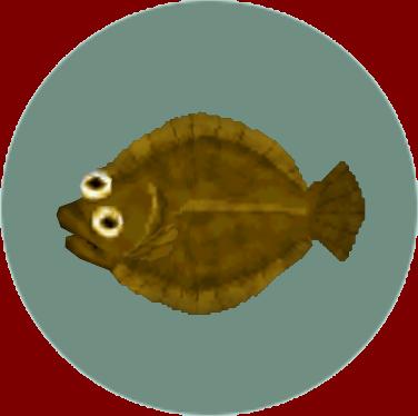 File:Olive Flounder (City Folk).png