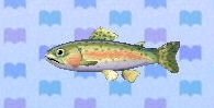 File:Rainbow trout encyclopedia (New Leaf).jpg