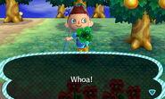 Thats a big damn clover