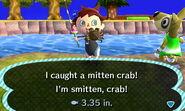 HNI 0083 mitten crab