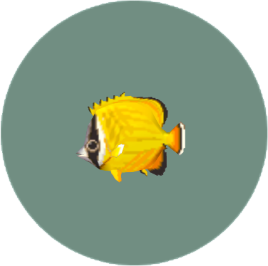 File:Butterfly Fish (City Folk).png