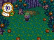 Grass, shown on animal crossing- city folk