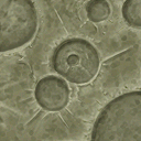 Flooring lunar surface