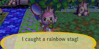 Rainbow stag